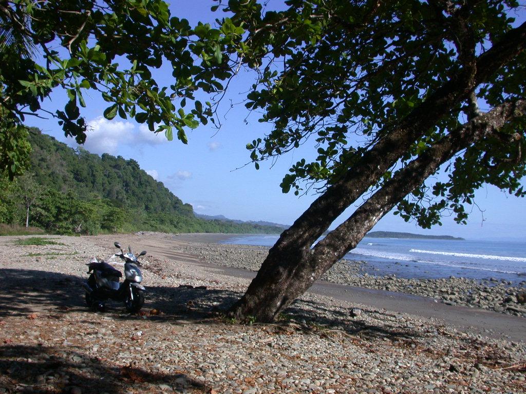 En una playa aislada, Bahia de Drake