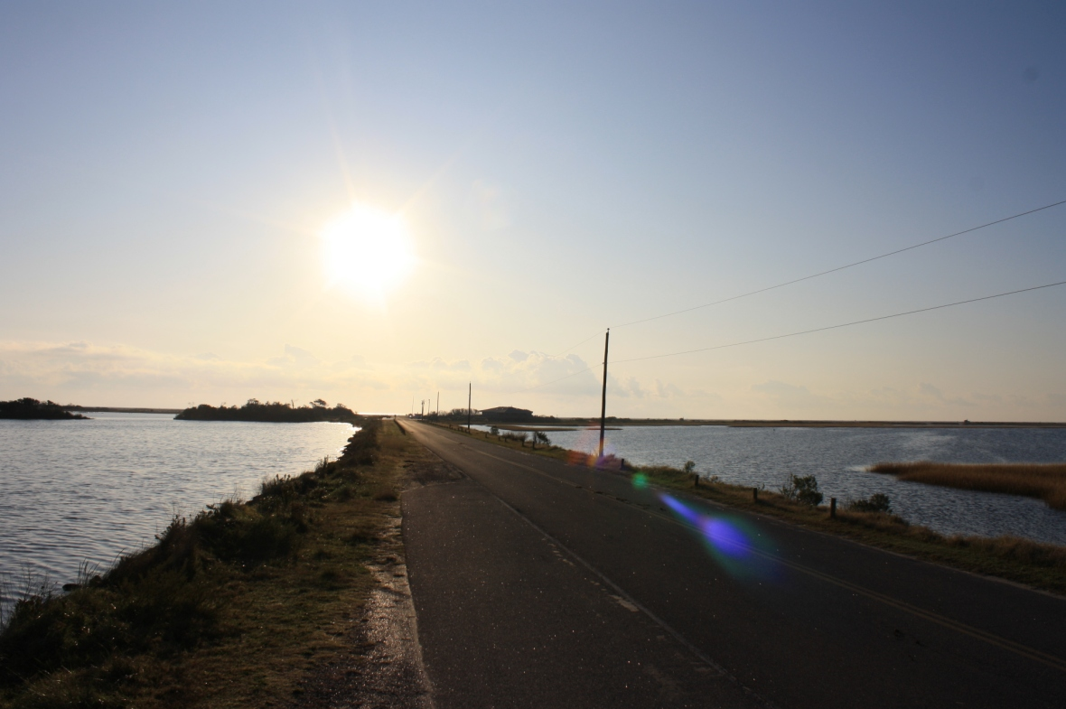 Chincoteague NWR (30)