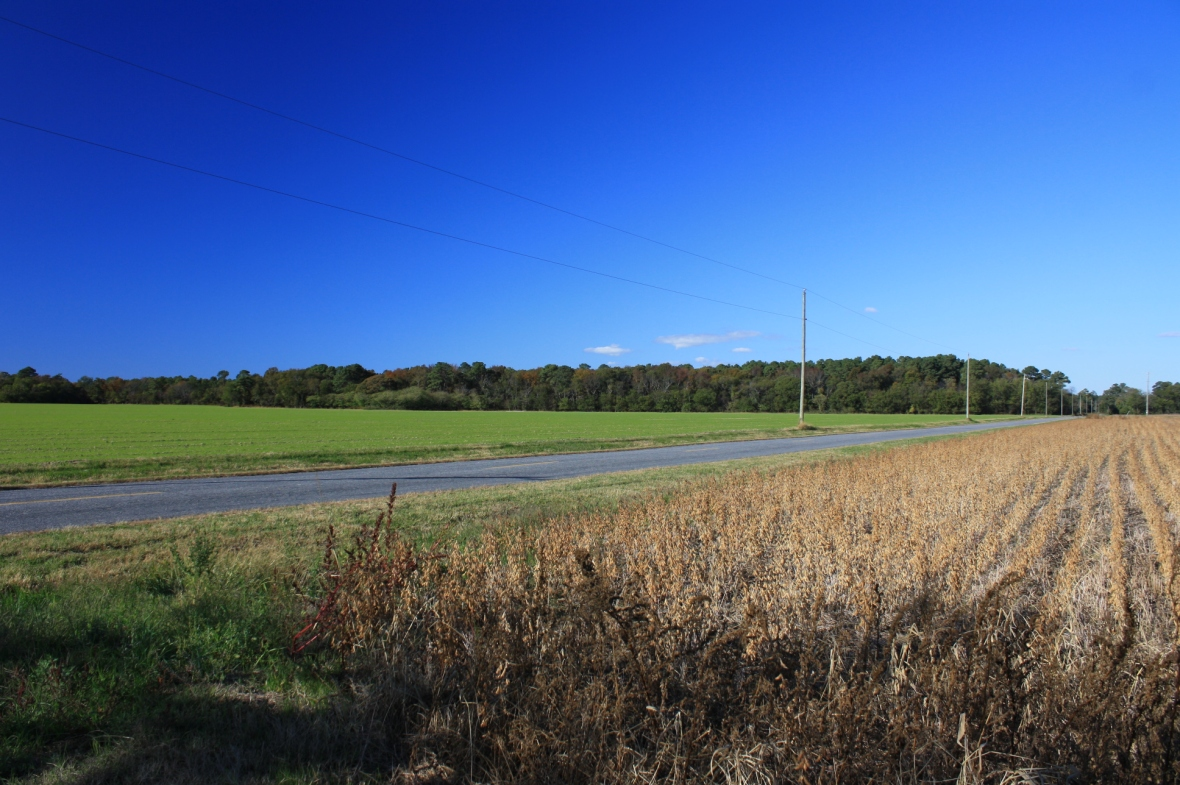 fields-Sealand Ln-Rt 600 (6)