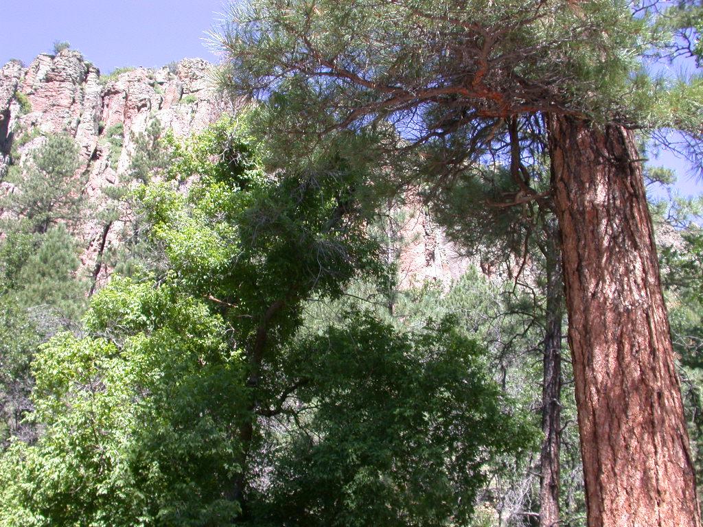 Largo Cyn-Apache NF-Reserve (1)