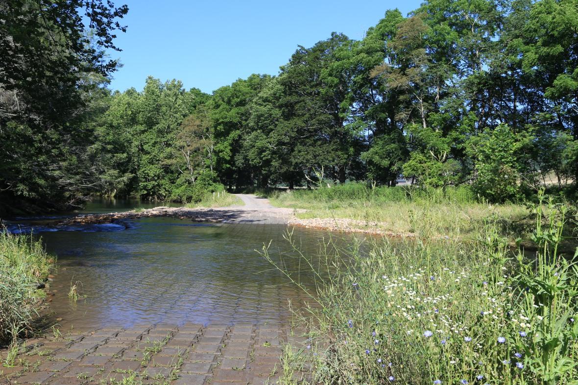 Clover Creek (6)