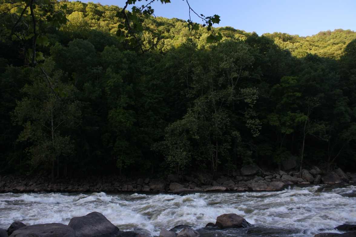 New River Gorge at Rt 219 (38)