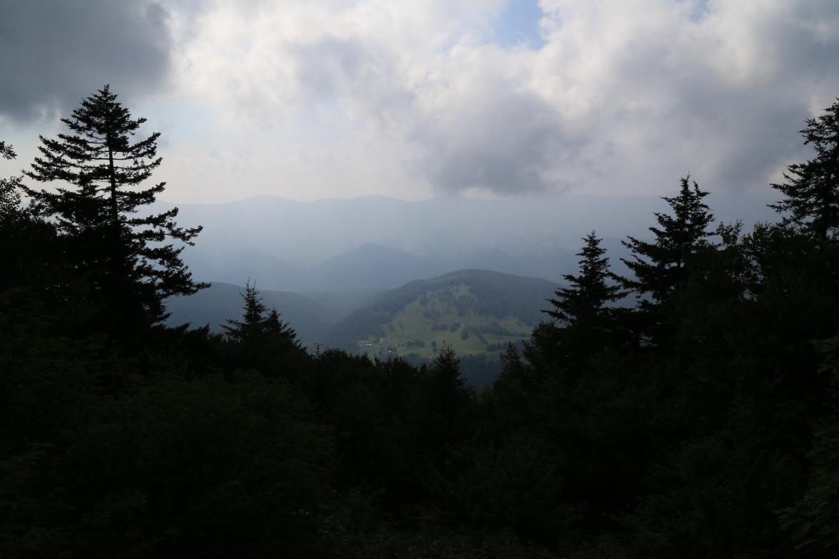Spruce Knob (7)
