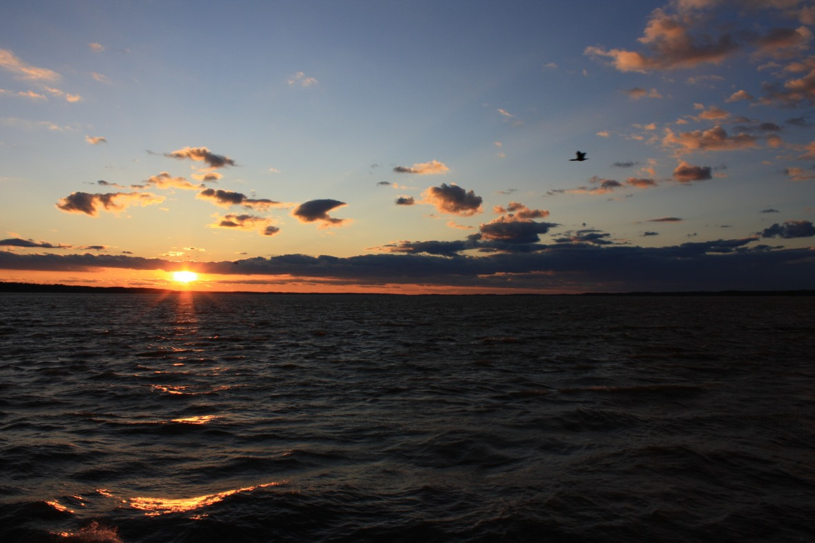 Jamestown Ferry-sunset (3)