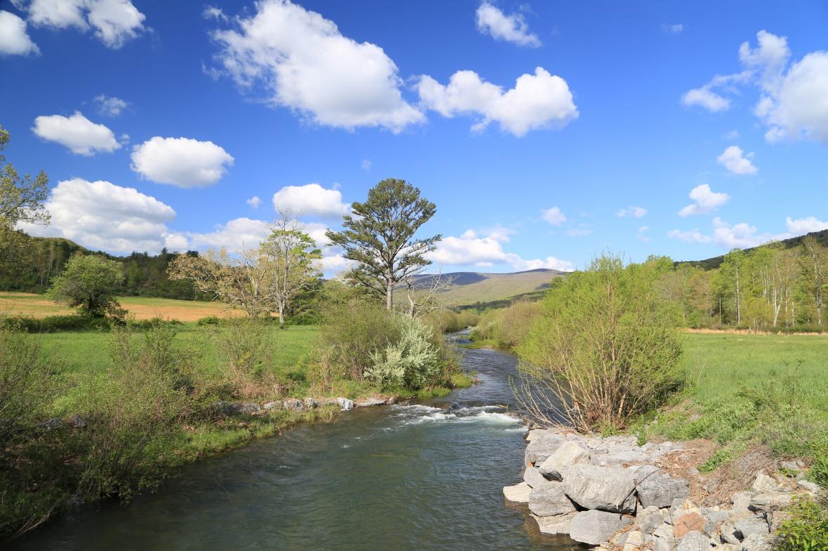 Bland Co-Hunting Camp Creek-May 10 (2)