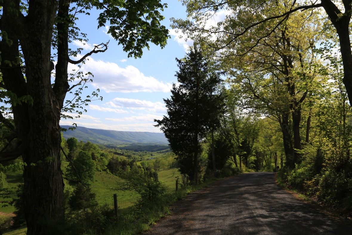 Corn Valley (1)