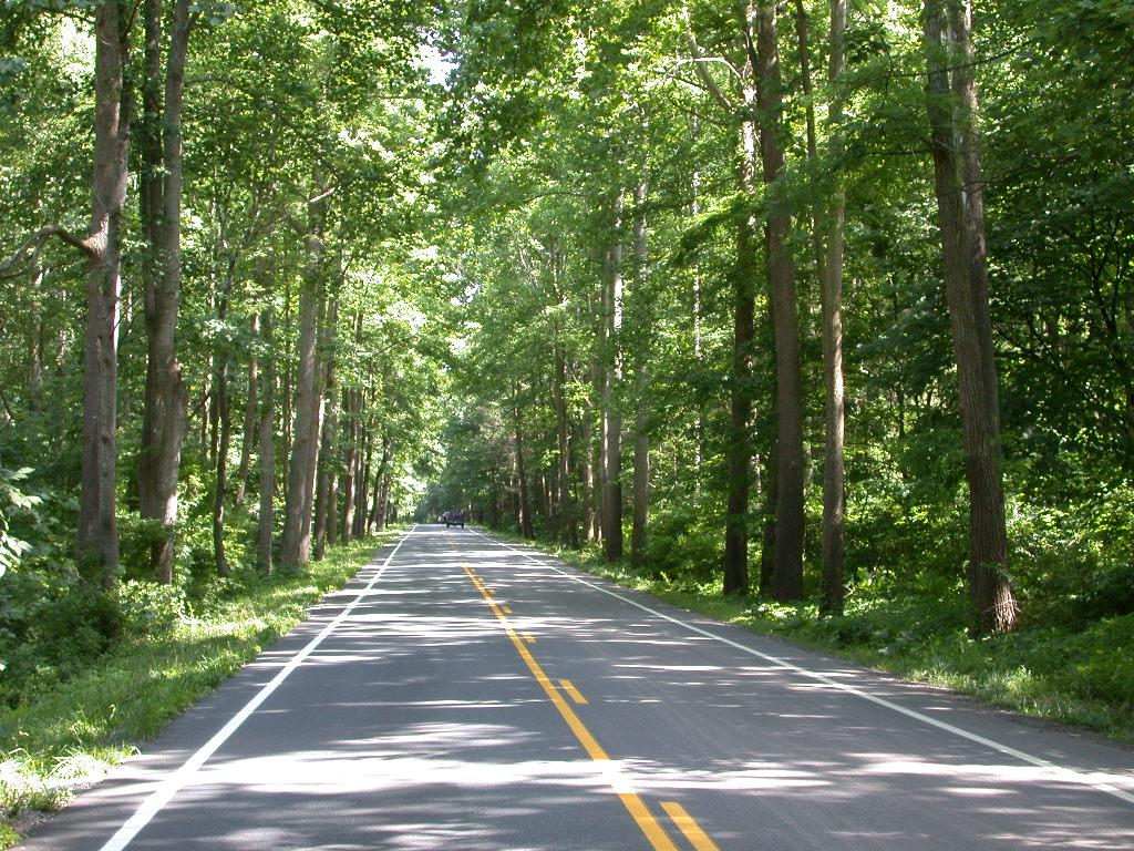 Rockingham County-Rt33-George Washington National Forest west of Harrisonburg