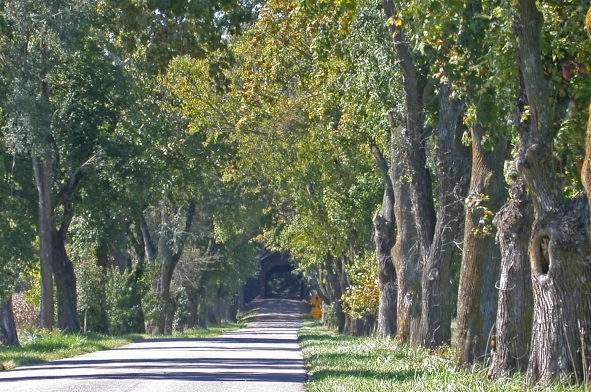 Shenandoah Valley-Meems Bottom-Rt 720 (5)