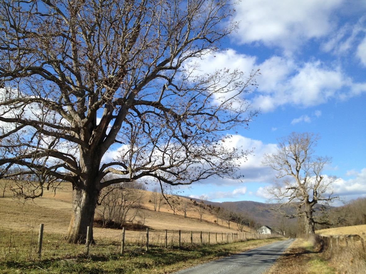 Shenandoah Valley-Middlebrook area-Dec 24 (4)