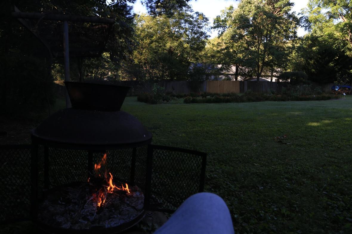Backyard-Sep 16 (6)