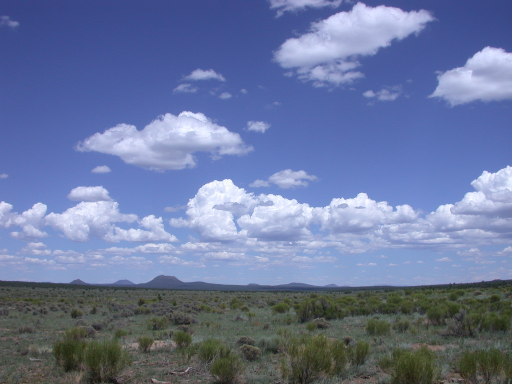 Mangas-Catron County-NM (16)
